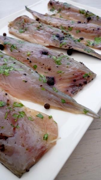 Filets de maquereaux marin s fa on gravelax cuisine de - Cuisiner des maquereaux ...