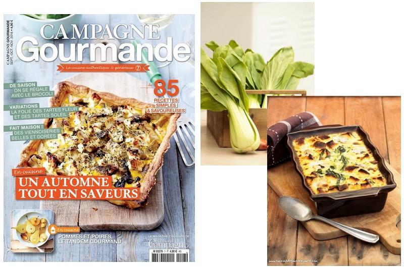 Gratin de Pak Choï au bleu pour Cuisine Gourmande n°7 - ©www.cuisinedetouslesjours.com