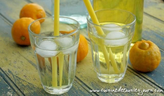 ©www.cuisinedetouslesjours.com - Sirop de citron bergamote
